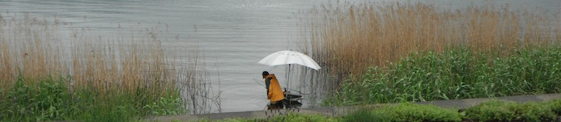 man-fishing-alone-among-the-reeds